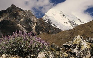 (Peruvian Andes 2014, Kevin Schafer-WWF)