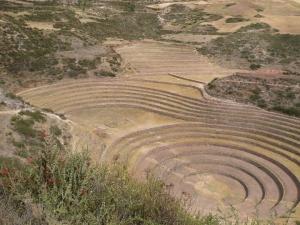 ayniglobal.org-ancestral-land-image-48